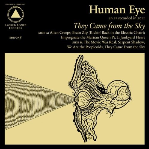 Copertina Disco Vinile 33 giri They Came From The Sky di Human Eye