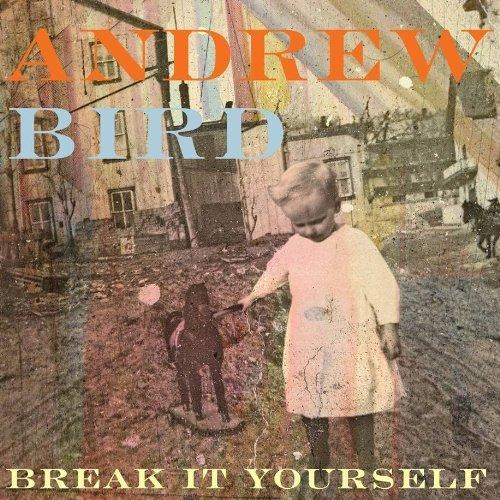 Copertina Disco Vinile 33 giri Break It Yourself [2 LP] di Andrew Bird