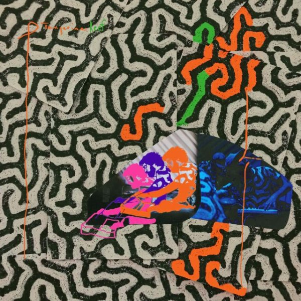 Copertina Vinile 33 giri Tangerine Reef [2 LP] di Animal Collective