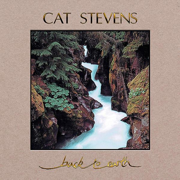 Copertina Vinile 33 giri Back to Earth  di Cat Stevens