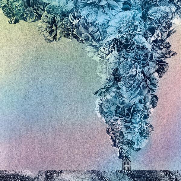 Copertina Disco Vinile 33 giri Carnation di Daughn Gibson