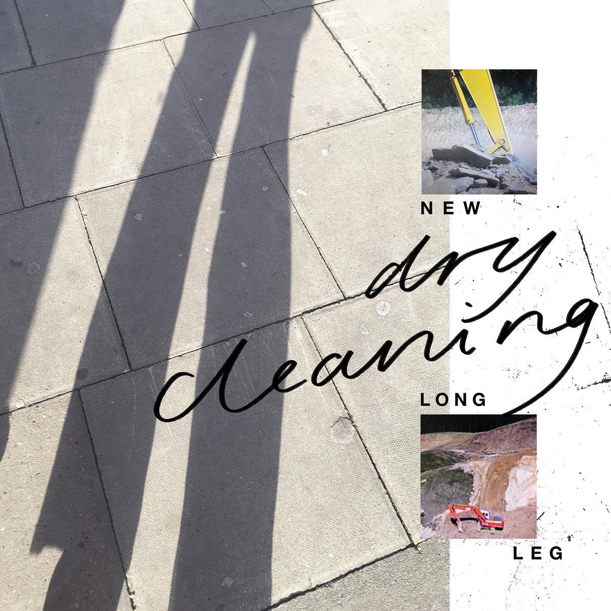 Copertina Vinile 33 giri New Long Leg di Dry Cleaning