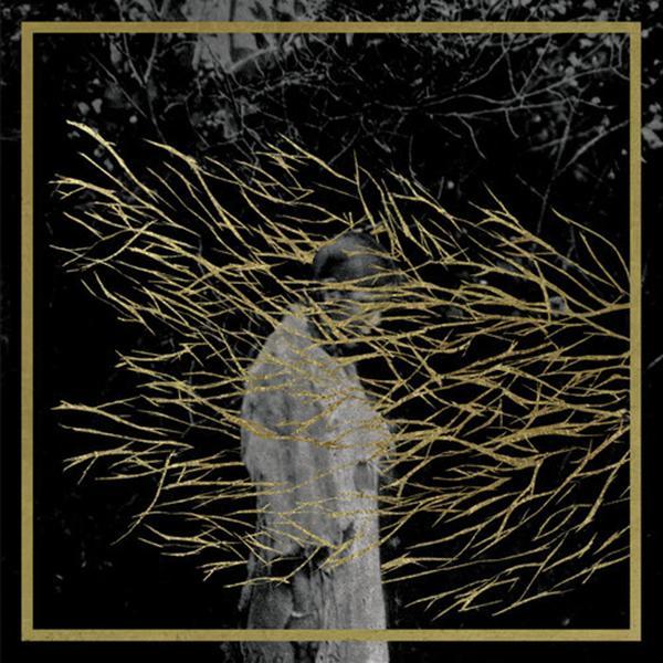 Copertina Disco Vinile 33 giri Engravings [2 LP] di Forest Swords