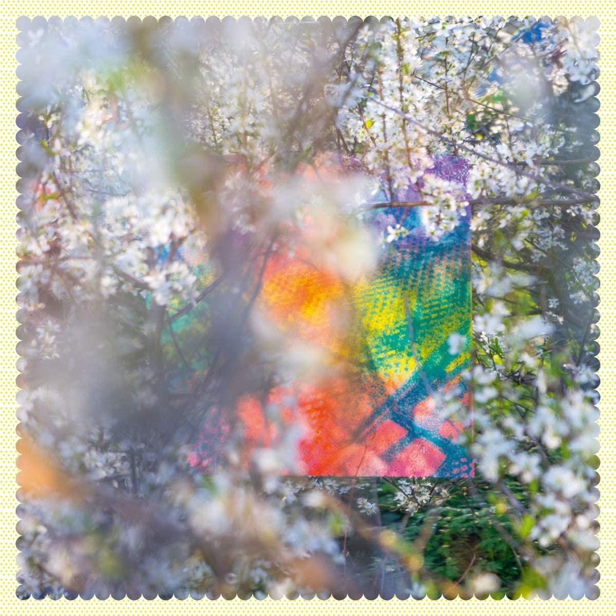 Copertina Vinile 33 giri Sixteen Oceans [2 LP] di Four Tet