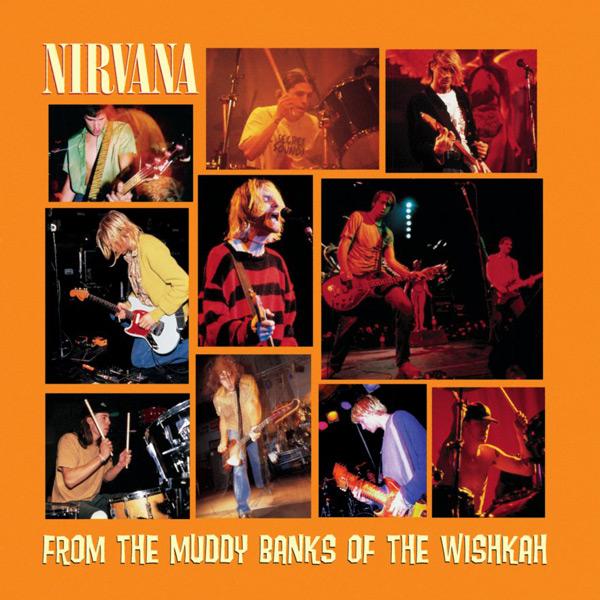 Copertina Disco Vinile 33 giri From the Muddy Banks of the Wishkah di Nirvana