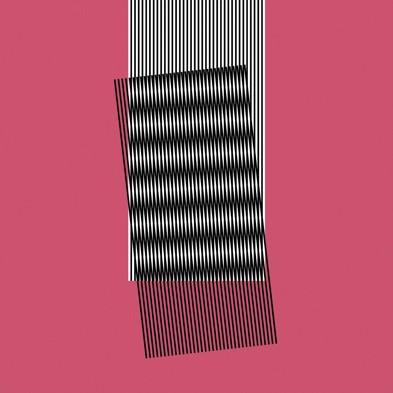 Copertina Disco Vinile 33 giri Why Make Sense? [2 LP] di Hot Chip