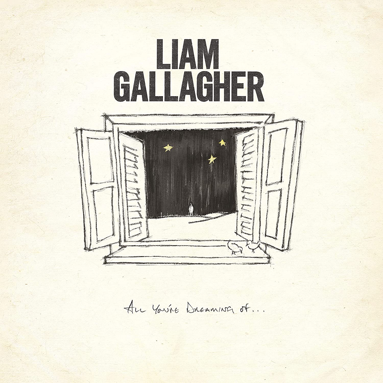 Copertina Vinile 33 giri All You'Re Dreaming [Singolo] di Liam Gallagher
