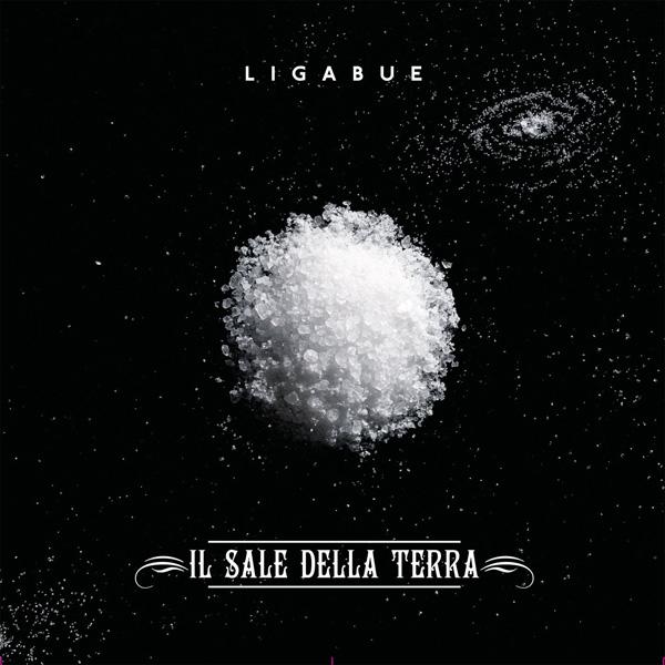Copertina Disco Vinile 33 giri Il Sale Della Terra [Singolo 45 Giri] di Ligabue
