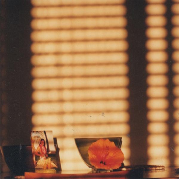 Copertina Disco Vinile 33 giri Light on a Wall di Mike Cooper