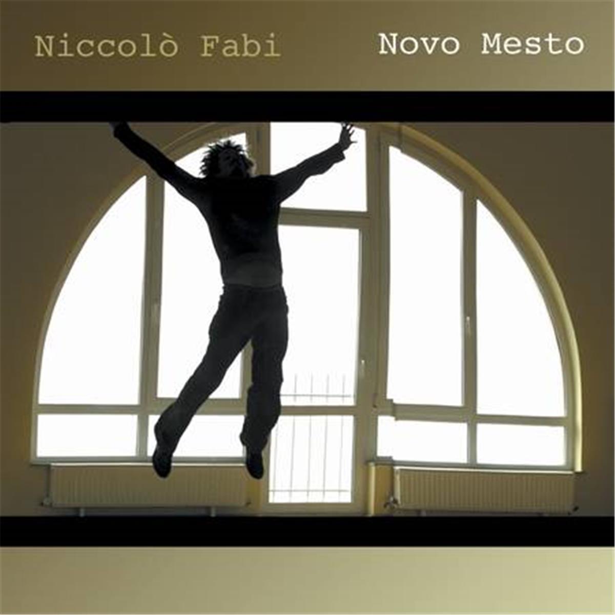 Copertina Vinile 33 giri Novo Mesto di Niccolò Fabi