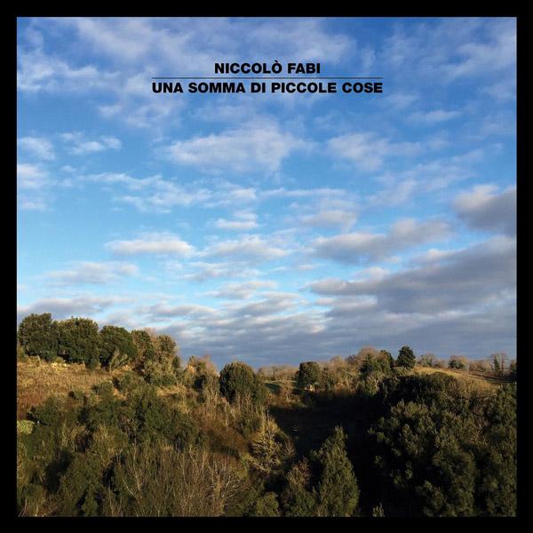 Copertina Disco Vinile 33 giri Una Somma di Piccole Cose di Niccolò Fabi