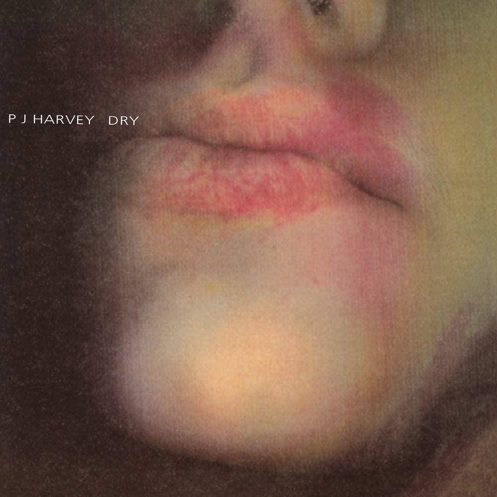 Copertina Vinile 33 giri Dry di PJ Harvey