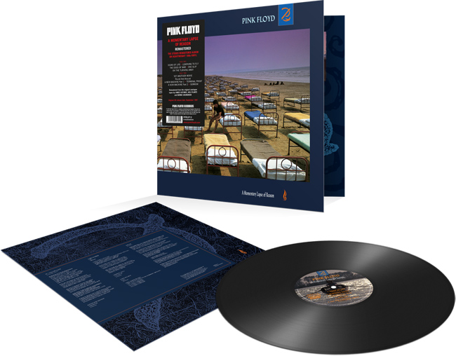 Copertina Disco Vinile 33 giri A Momentary Lapse of Reason di Pink Floyd