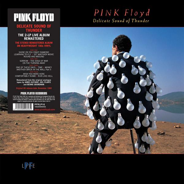 Copertina Vinile 33 giri Delicate Sound of Thunder [2 LP] di Pink Floyd