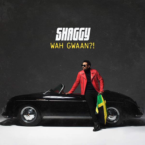 Copertina Vinile 33 giri Wah Gwaan?! di Shaggy