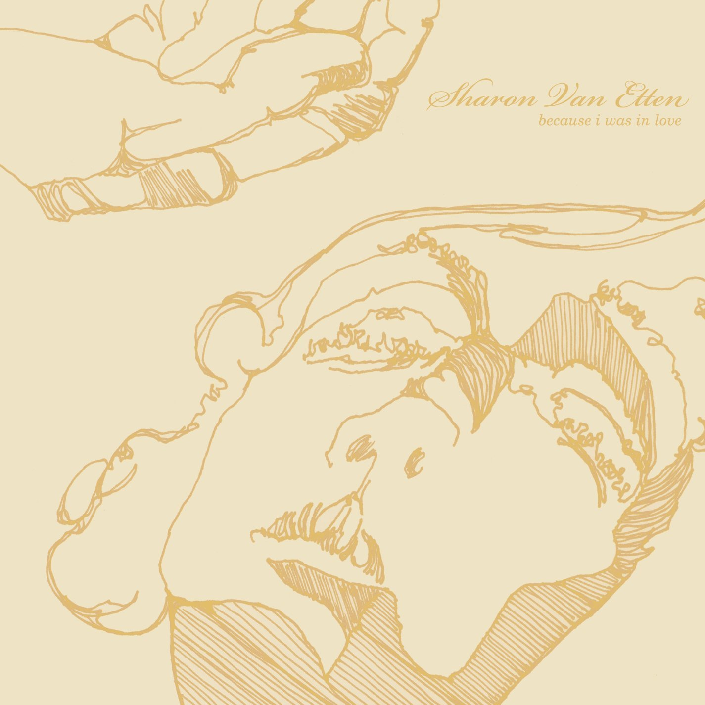 Copertina Disco Vinile 33 giri Because I Was in Love di Sharon Van Etten