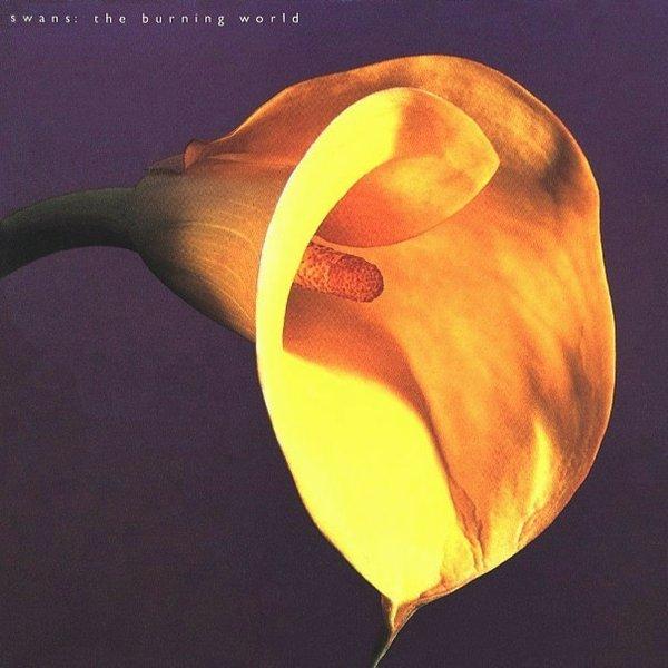 Copertina Disco Vinile 33 giri Burning World di Swans