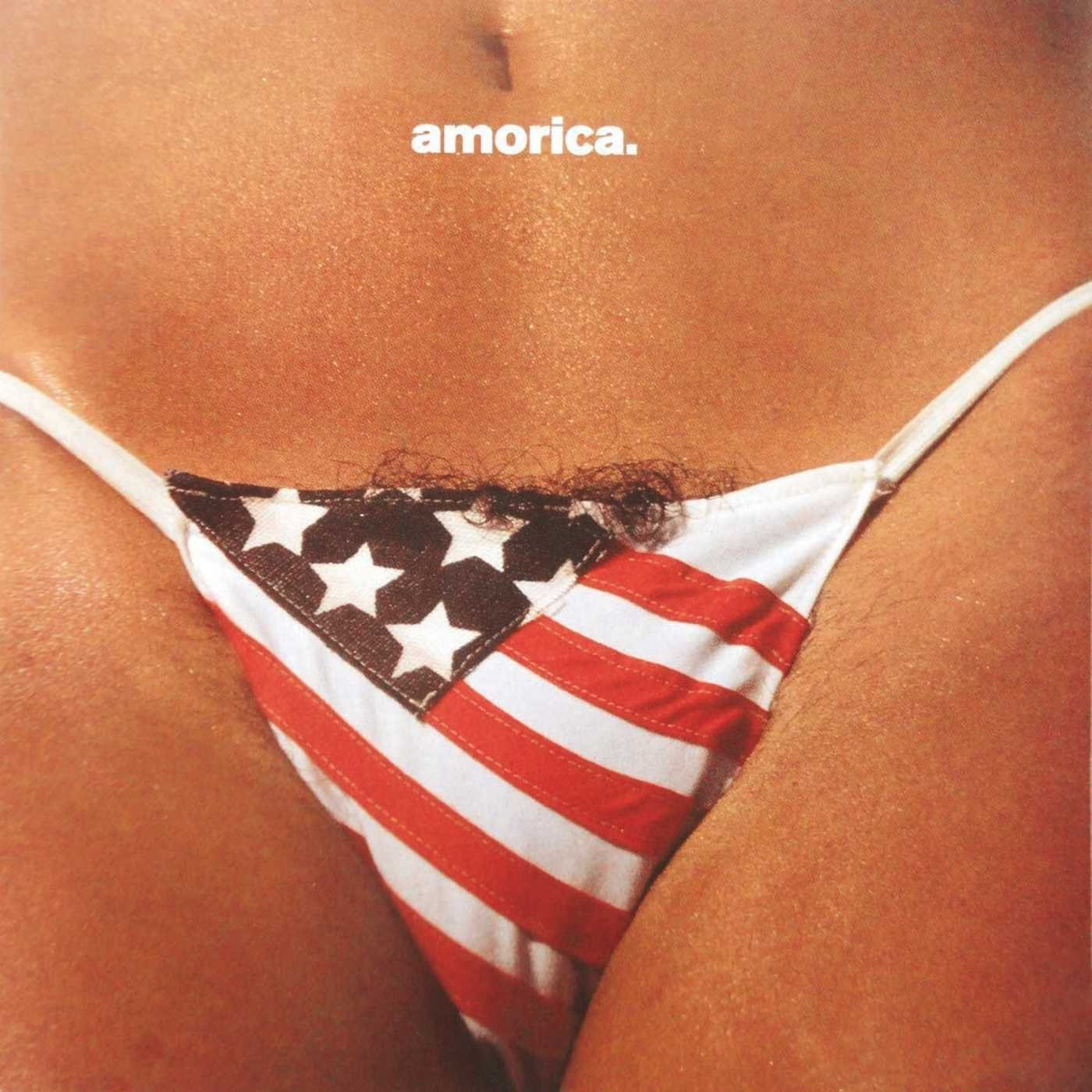 Copertina Disco Vinile 33 giri Amorica  di The Black Crowes