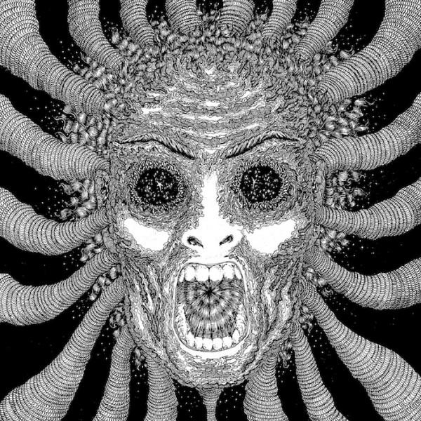 Copertina Disco Vinile 33 giri Slaughterhouse [2 LP] di Ty Segall