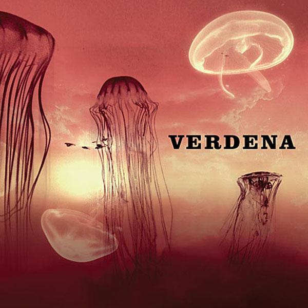 Copertina Disco Vinile 33 giri Solo un grande sasso [2 LP] di Verdena