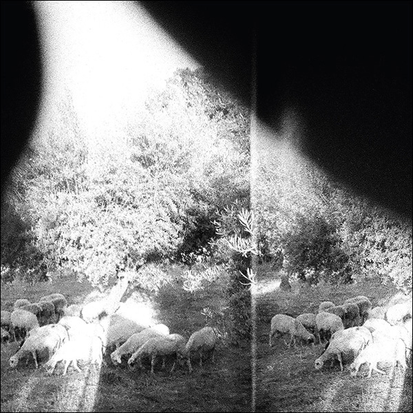 Copertina Disco Vinile 33 giri Asunder, Sweet and Other Distress di Godspeed You! Black Emperor