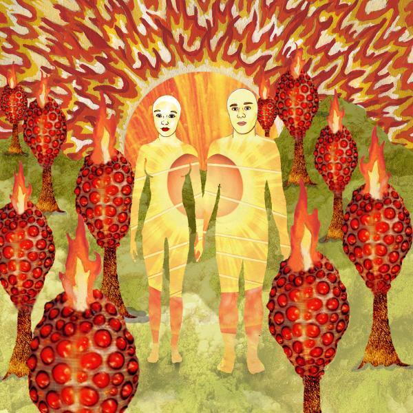 Copertina Disco Vinile 33 giri The Sunlandic Twins [2 LP] di Of Montreal