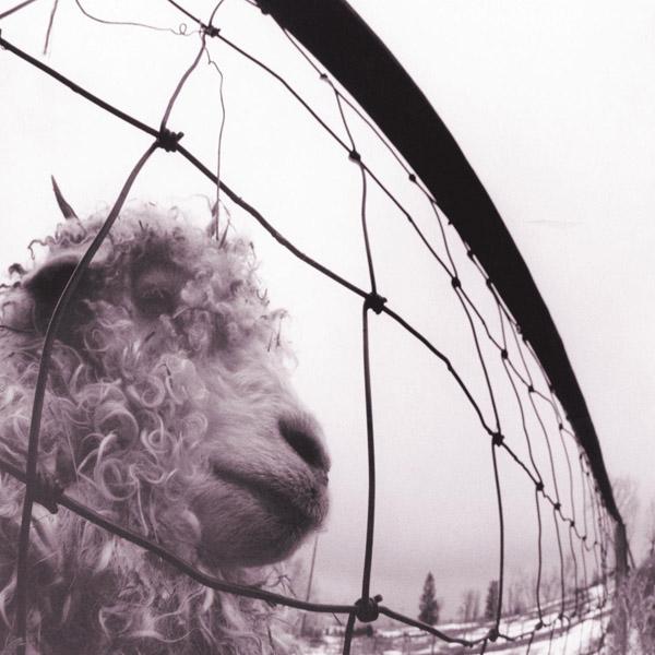 Copertina Disco Vinile 33 giri VS.  di Pearl Jam