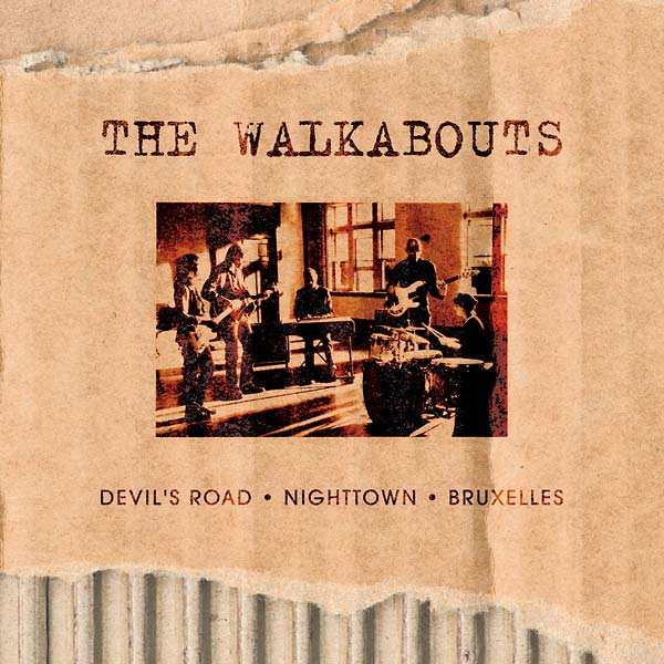 Copertina Disco Vinile 33 giri The Virgin Years [Cofanetto 6xLP 5xCD] di The Walkabouts